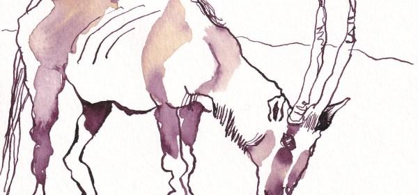 Gazelle, Künstlerpostkarte von Susanne Haun, 12 x 17 cm, Tusche auf Aquarellkarton (c= VG Bild-Kunst, Bonn 2021
