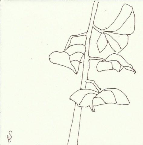 Auf dem Friedhof (c) Zeichnung von Susanne Haun