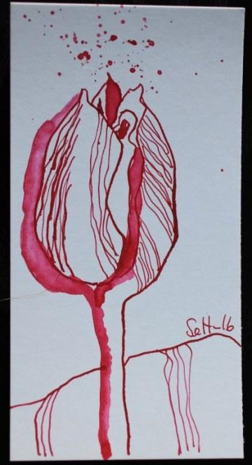 Pink Tulpen - 15 x 5 cm - Tusche auf Karton (c) Zeichnung von Susanne Haun