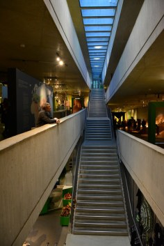 18 Treppen - Neanderthal Museum (c) Foto von M.Fanke