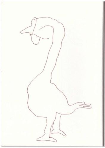 Laufente in der Mark Brandenburg, Neuroddahn (c) Zeichnung von Susanne Haun