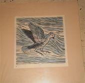 Gary | Bird in Flight