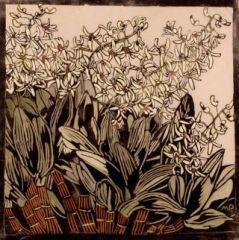 Preston   Rock Lilies