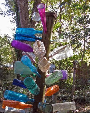 Colourful bottle tree