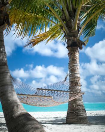 Garden hammock: Summer's essential Luxury