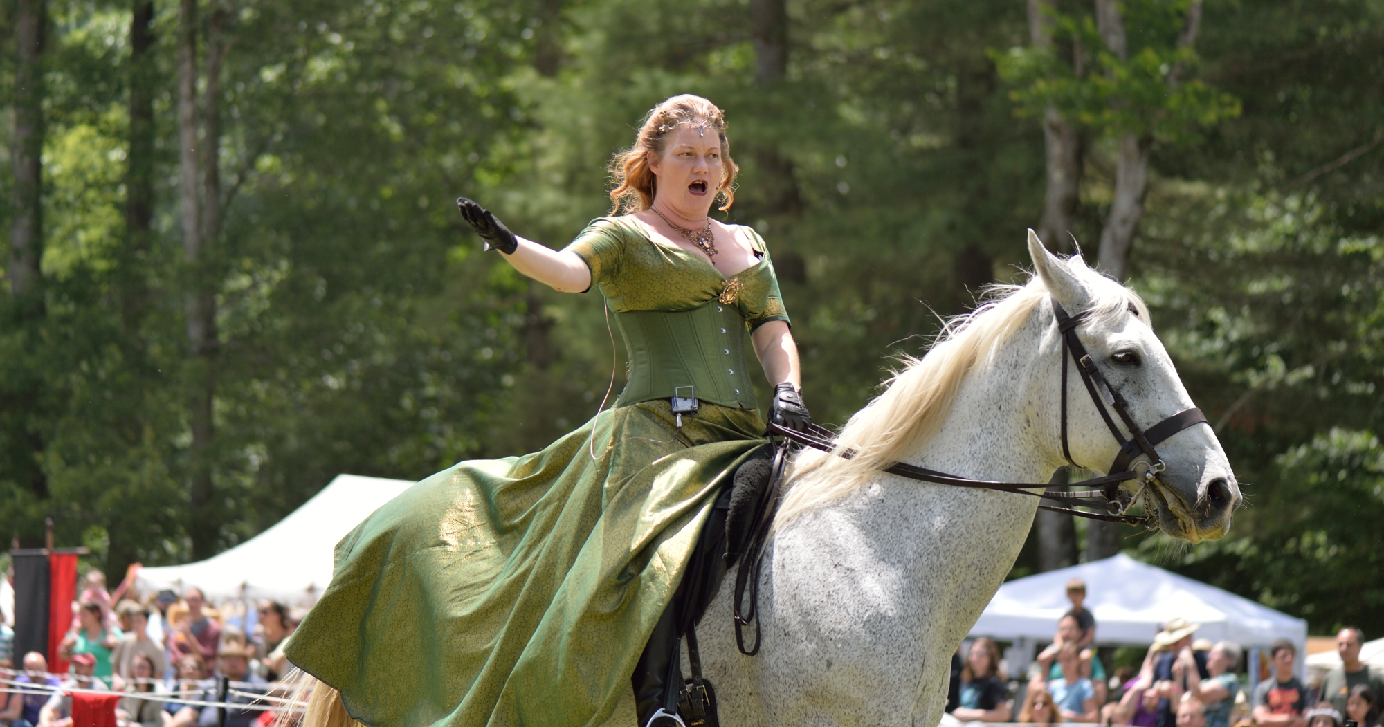 Oracle during a joust performance at a Renaissance Festival.
