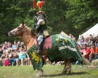 A knight in full regalia before a joust during a Renaissance Festival.