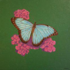 Blue Morpho butterfly, giclee print by Susan Sternau