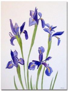 Five Blue Irises by Susan Sternau