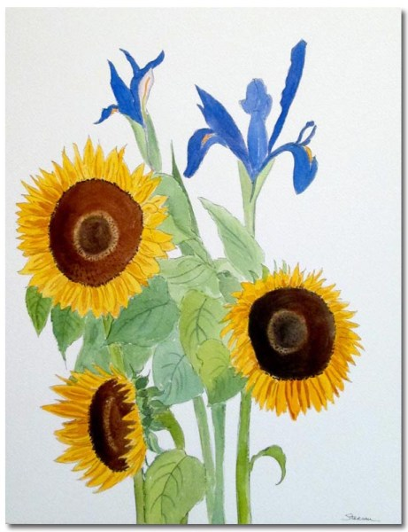 Iris with Sunflowers by Susan Sternau