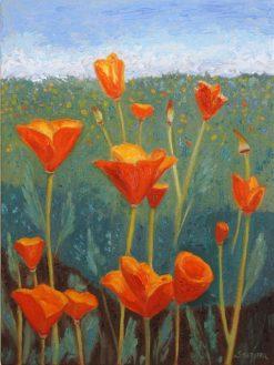 Poppies, giclee print by Susan Sternau