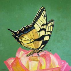 Tiger Swallowtail butterfly, giclee print by Susan Sternau