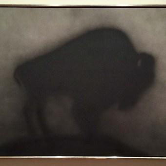 Buffalo by Ed Ruscha
