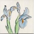 Two Blue Irises tile, by Susan Sternau