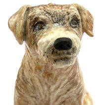 Morecambe, Border terrier