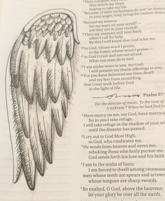 Have Mercy y on me, my God, have mercy on me. For I will take refuge. I will take refuge in the shadow of your wings until the disaster has passed.