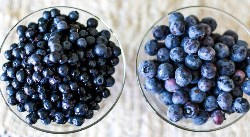 Unterschied blaubeere heidelbeere