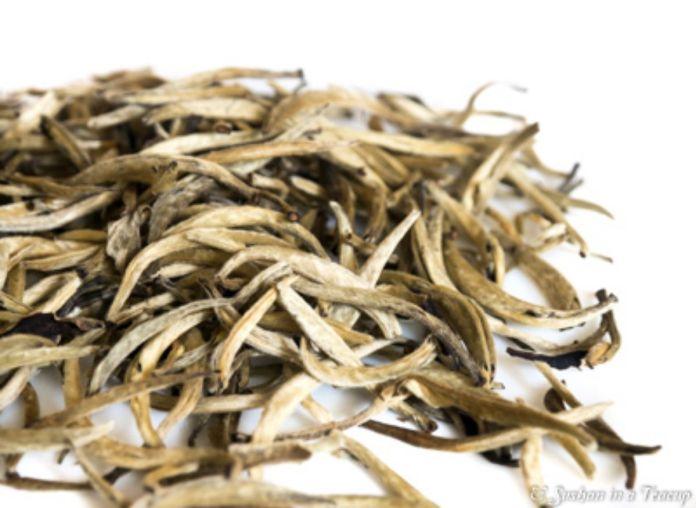tè bianco yinzhen