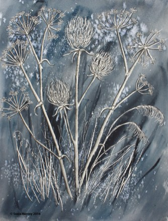 Queen Anne's Lace VIII