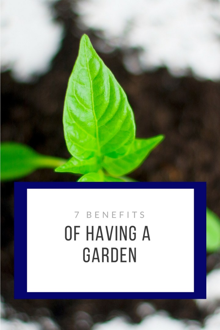7 benefits of having a garden