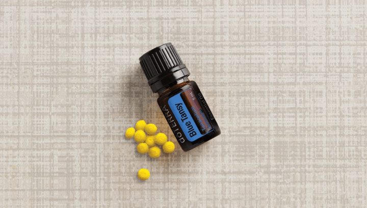 Keep Your Skin Healthy with Blue Tansy