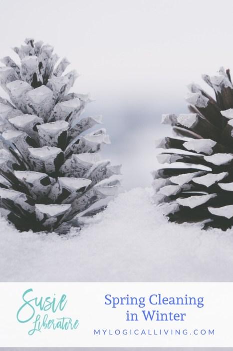 wintercleaning