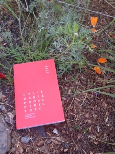 California Prose Directory amidst California poppies