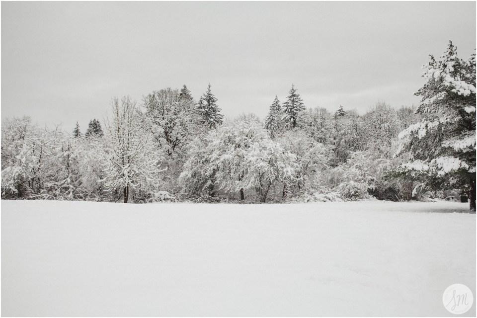 best new year - Susie Moreno Photography