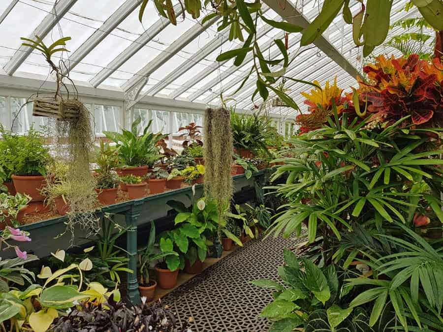 Victorian glasshouses, West Dean Gardens, near Chichester, West Sussex