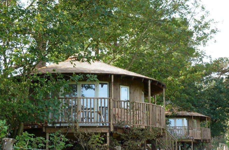 eco lodge treehouse East Sussex