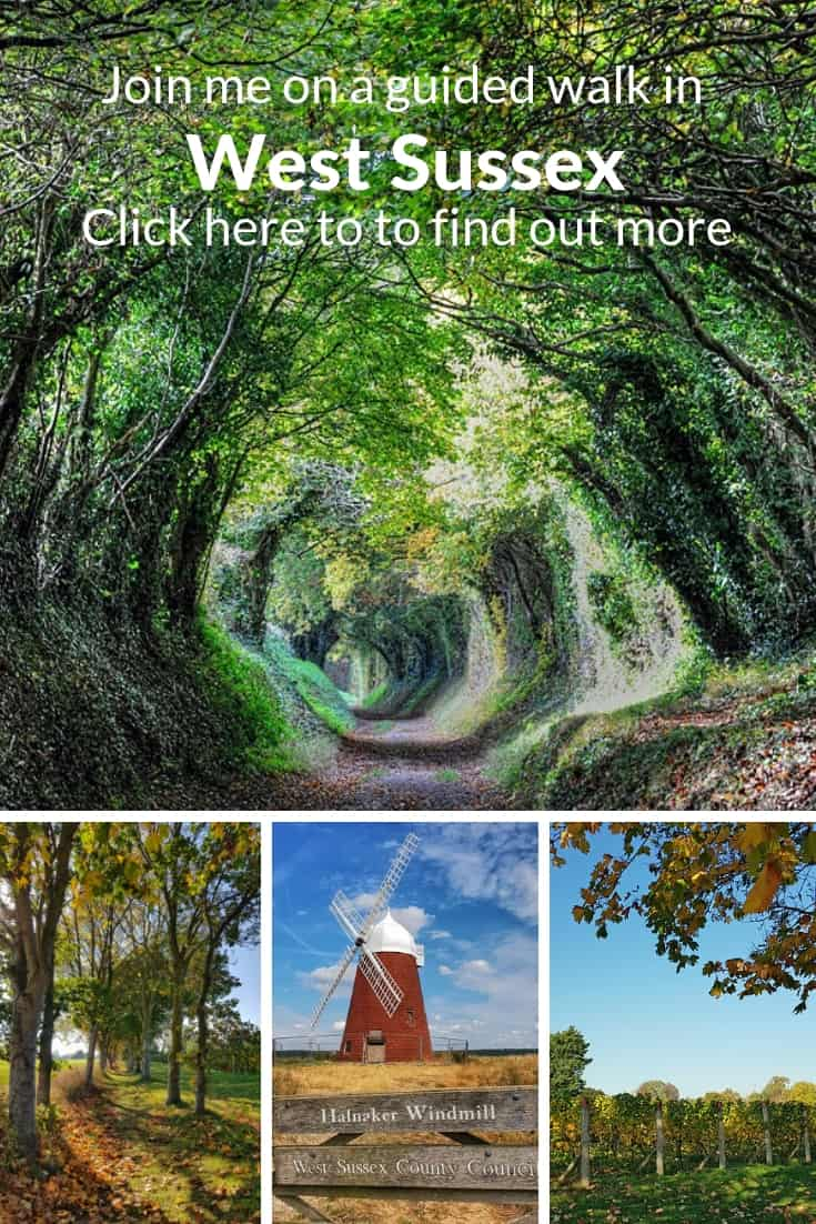 https://sussexbloggers.com/join-me-on-a-guided-walk-in-west-sussex-and-the-south-downs/