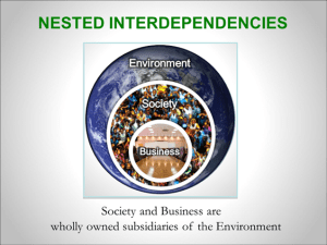nested interdependencies sustainability
