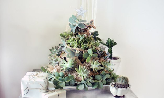 DIY: Succulent Tree