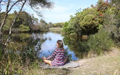 Crow Mind Meditation