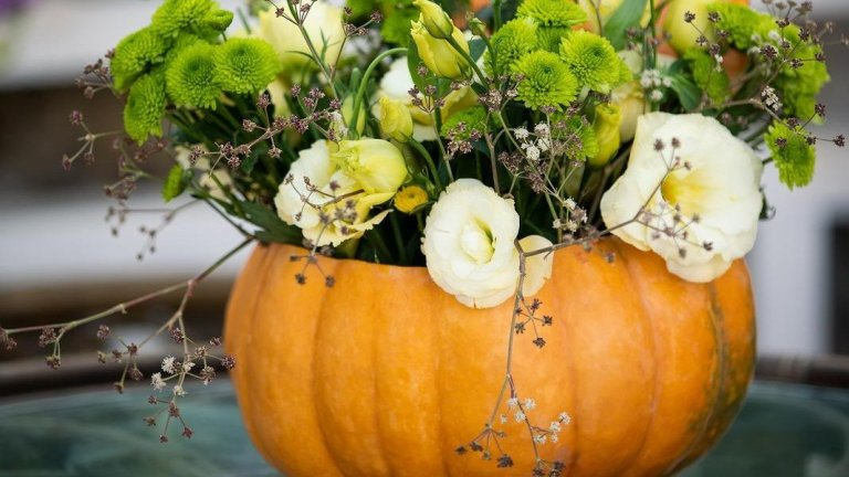 How to Use Halloween Pumpkins as Planters