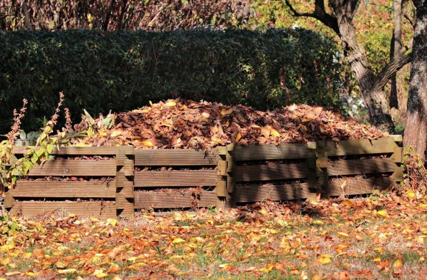 How to Start a Compost Heap