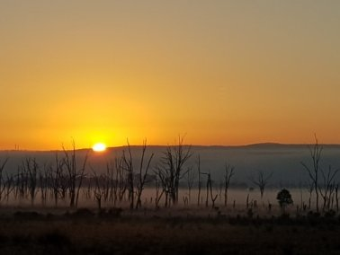 Frugal fun, sunrise at Winton Wetlands