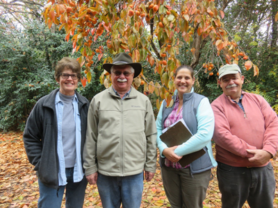 four people standing in front of a persimmon tree with orange fruit