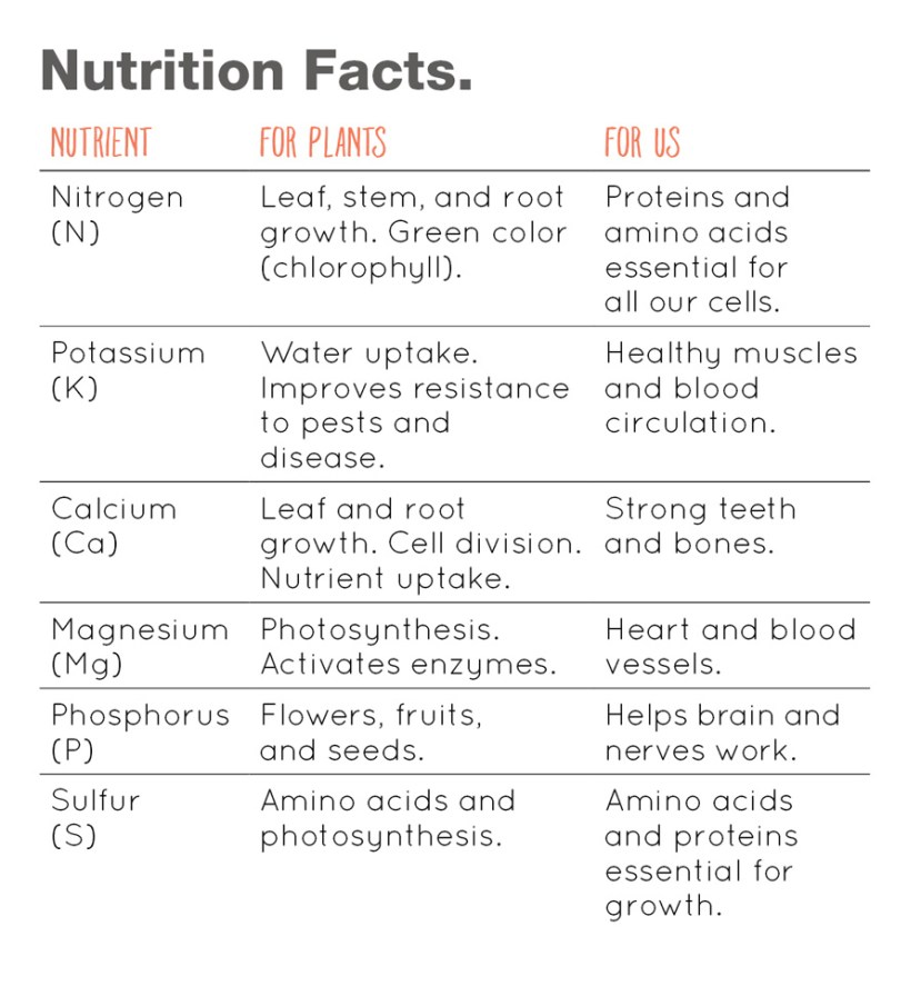 Infographic showing nutrients and use in plants versus humans