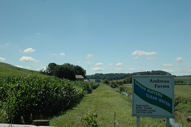 Andreas Farm uses buffers to help improve water quality. Photo credit: USDA NRCS.