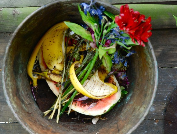 What Is Compost? Make It At Home For Free