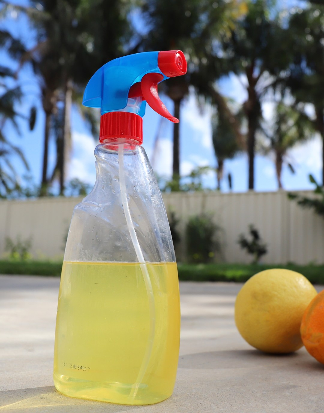 DIY Citrus Cleaner
