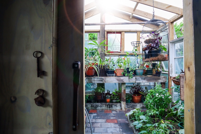 diy greenhouse from recycled windows
