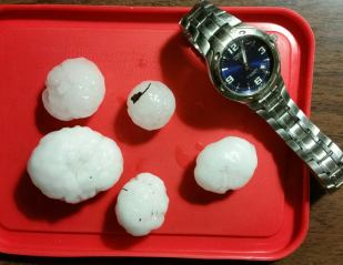 A sample of some hail collected during the storm. (Image courtesy of Helmut Mayer)