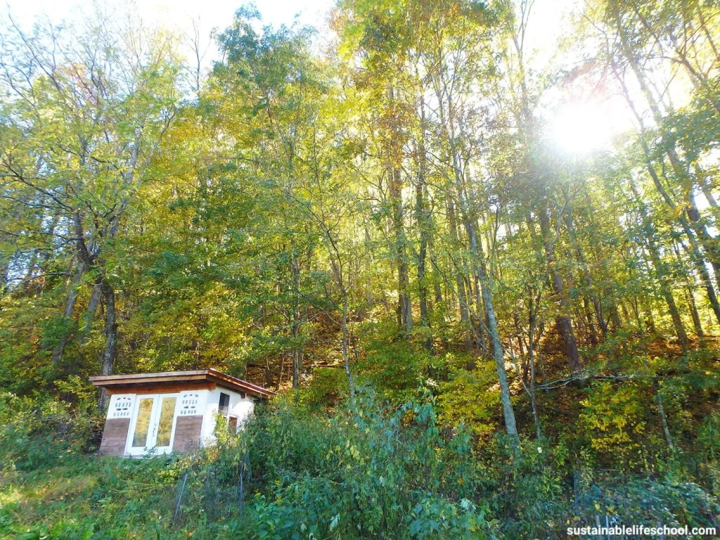 earthbag tiny house with fall colors