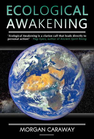 Ecological Awakening