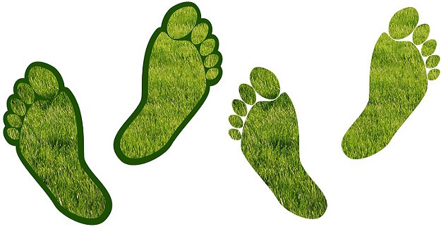 5 factors of your carbon footprint