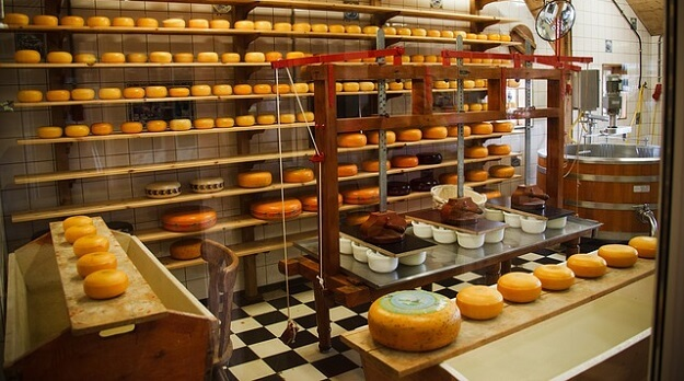 Cheese-making as a business