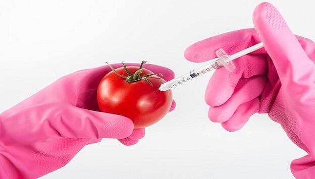 The big lie about GMOs