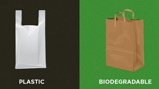 Life cycle of plastic vs. biodegradable alternatives